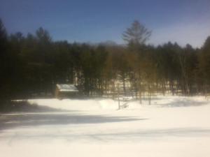 cabin in snow 2017